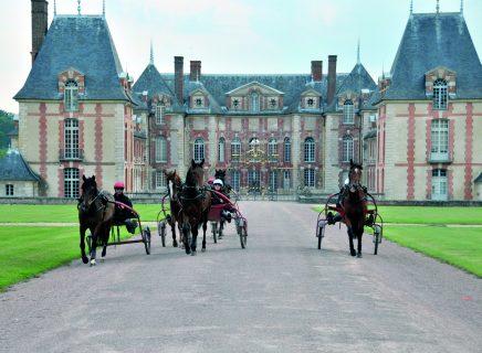 Chateau de Gros Bois - Boissy-Saint-Leger - Grobois