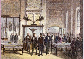 Napoléon III au Musée d'Archéologie Nationale